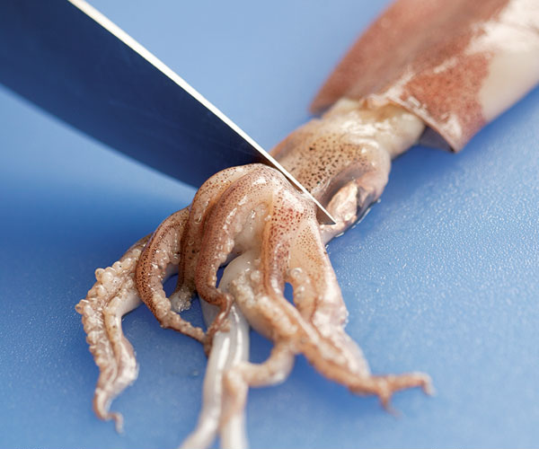 tips for buying and cleaning squid - finecooking