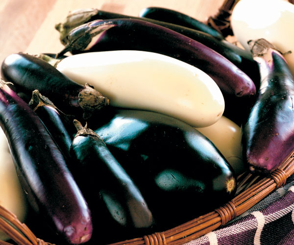 How to Harvest Eggplant
