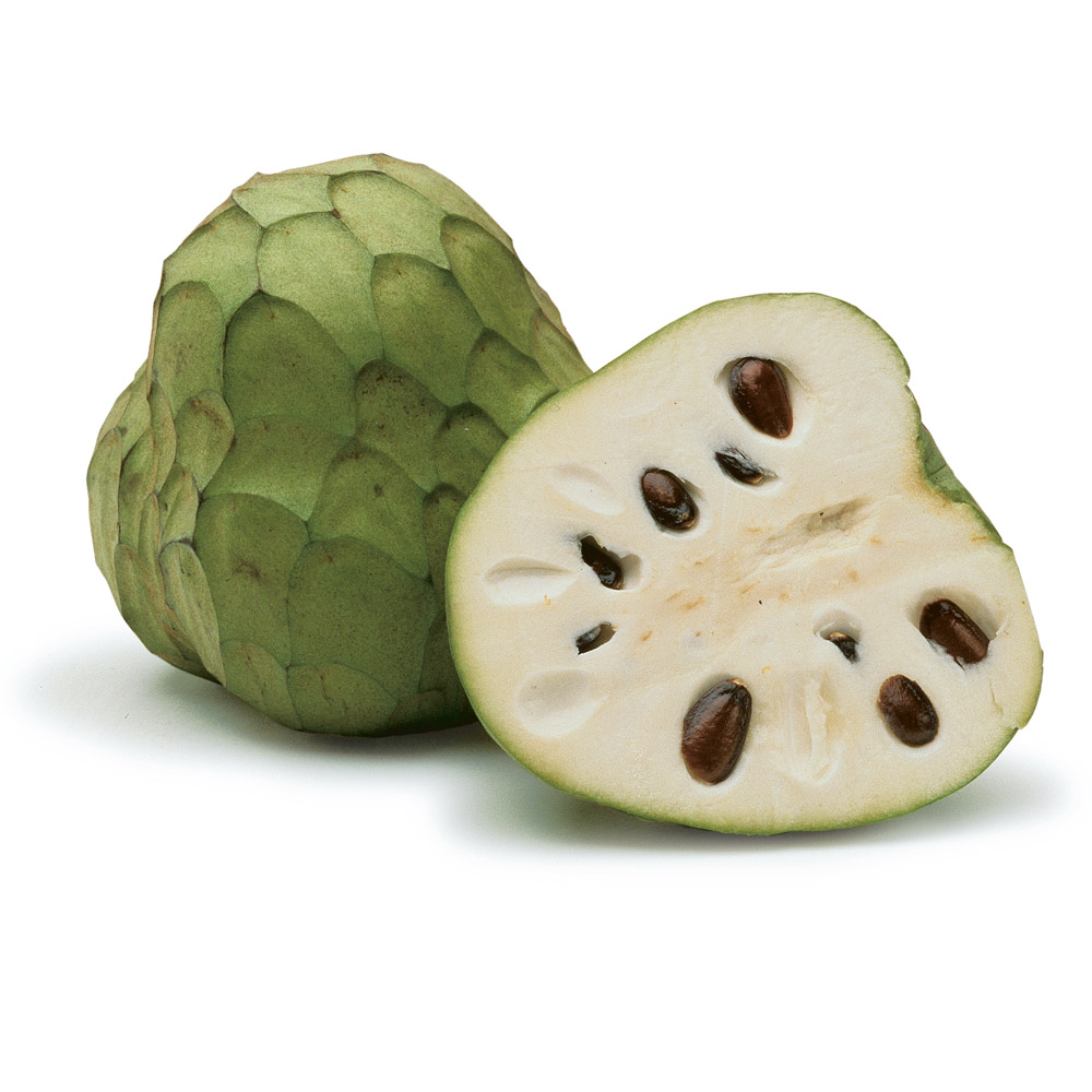 cherimoyas ingredient finecooking spoon clip art free spoon clip art images
