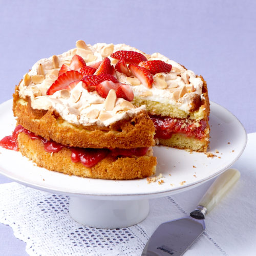 strawberry-rhubarb blitz torte