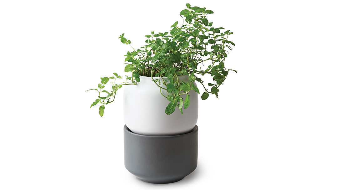 Chefn Self Watering Herb Planter Product Finecooking