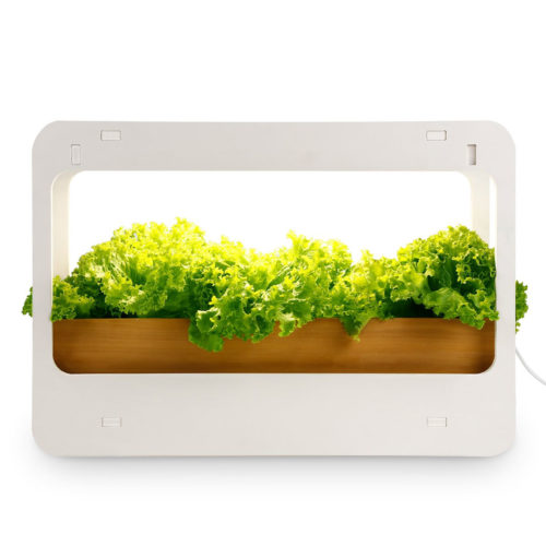 LED grow kit