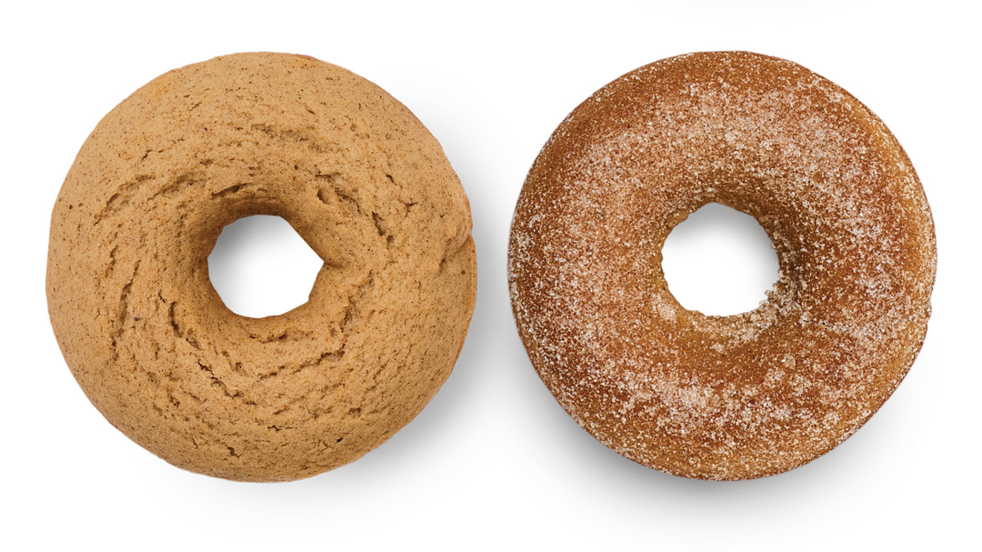 Baked Spice Doughnuts