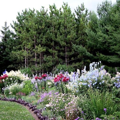 Garden Decor Ontario: More From Lorraine's Garden In Ontario