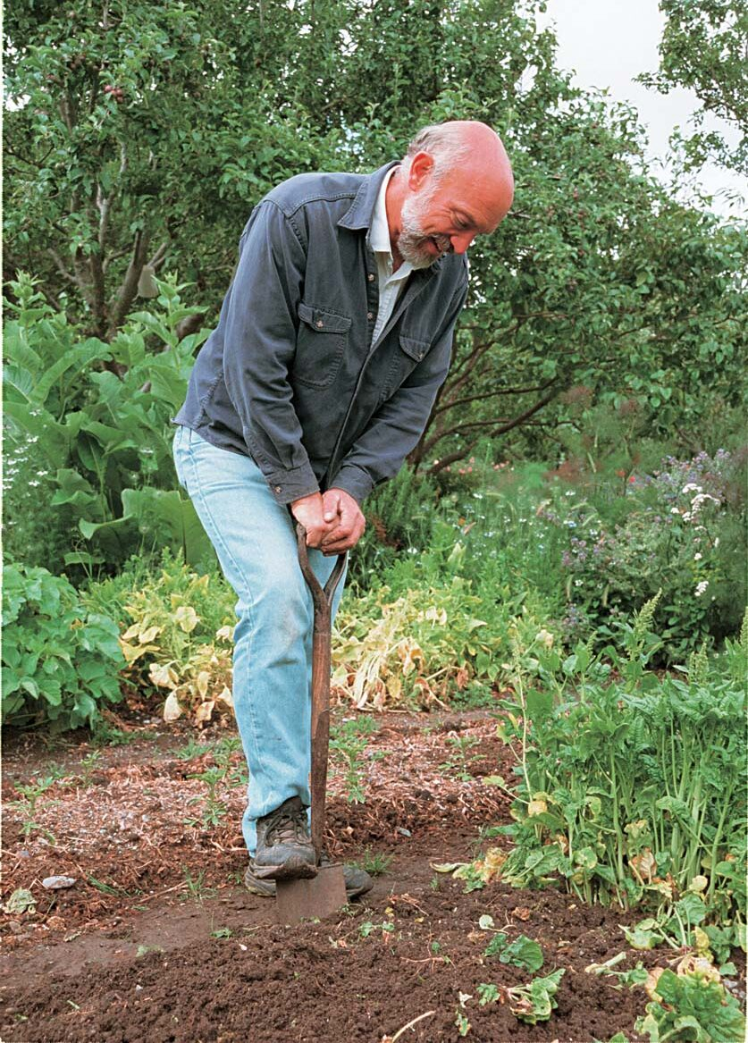 The flat blade of the D-handle garden spade is ideal for edging beds.