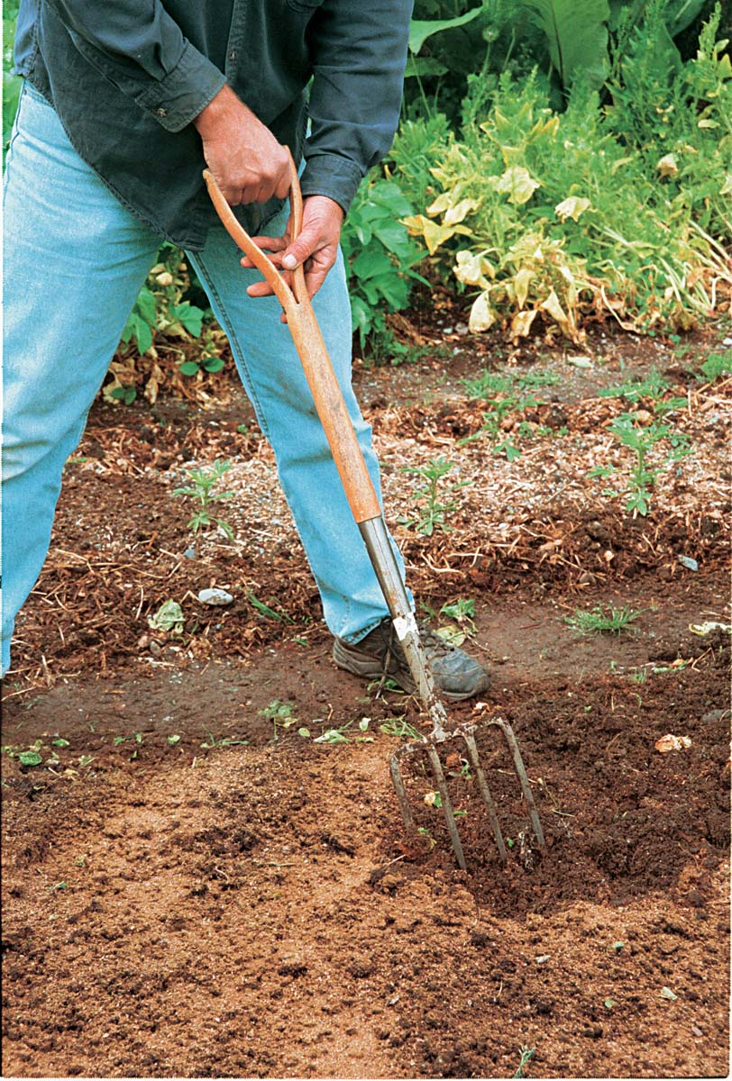 Besides loosening and edging soil, the D-handle garden fork is perfect for mixing in soil amendments like this fish meal.
