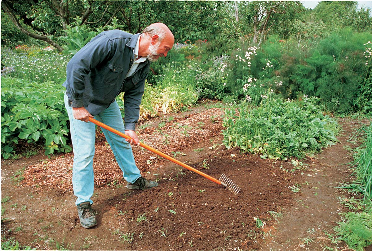 The back of a level-head rake is just the thing for smoothing out garden beds.