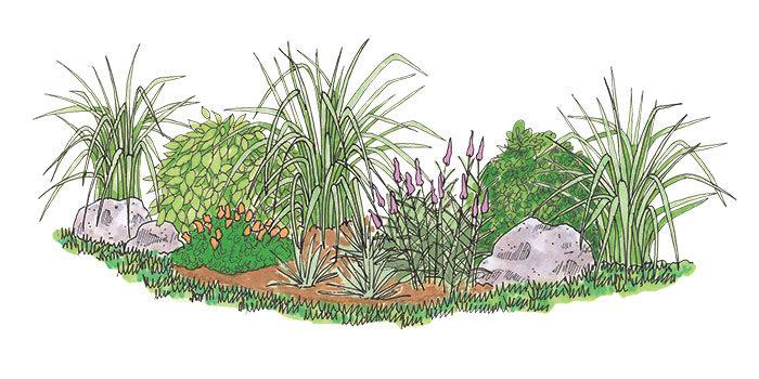 Illustration of a garden bed