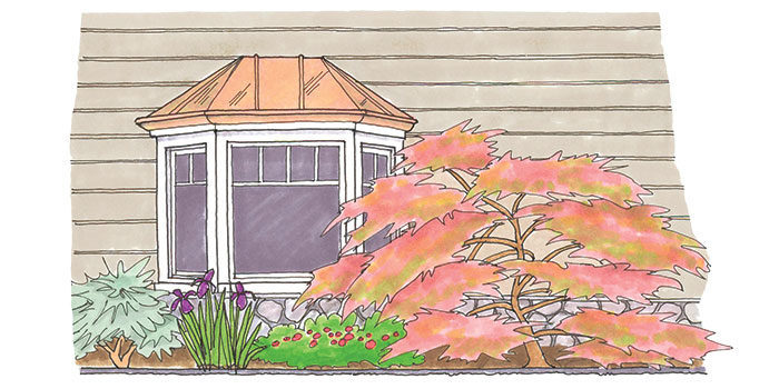illustration of house with a garden bed in front