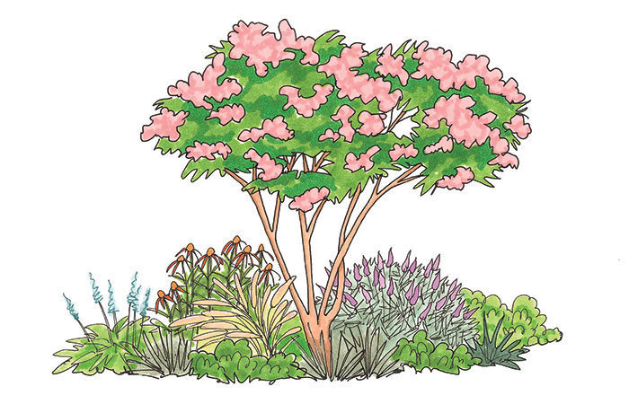 garden bed with tree illustration