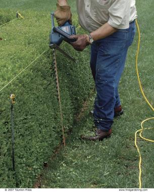 Trimming a Formal Hedge