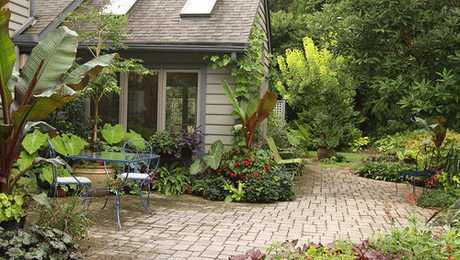 Redesigning the Backyard - FineGardening