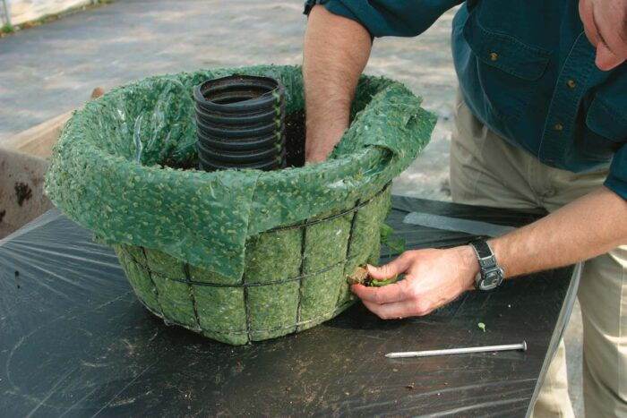 Small plugs or cell pack–size annuals work best because they minimize the size of the openings in your liner