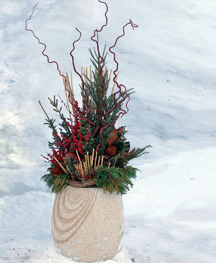 6 Winter Container Ideas Finegardening