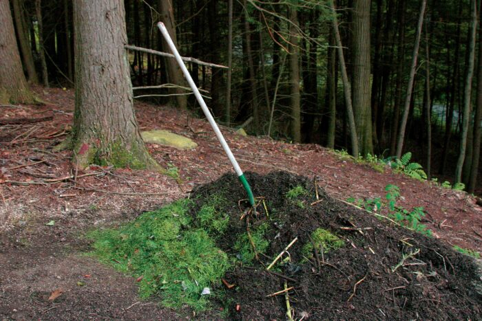 compost to supply perennials
