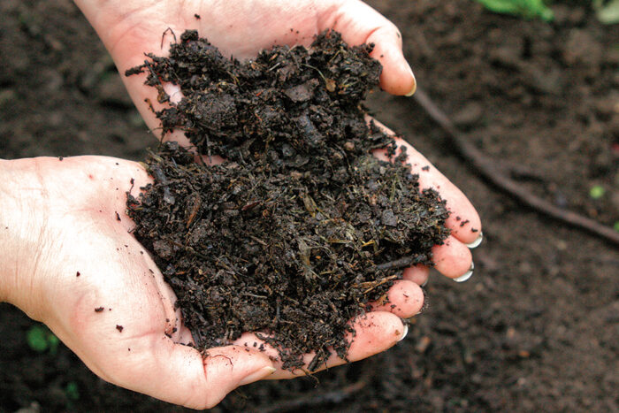 tend your own compost or buy compost