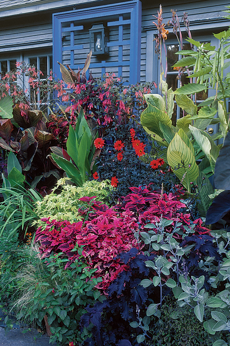 Staging A Container Plant Display Finegardening
