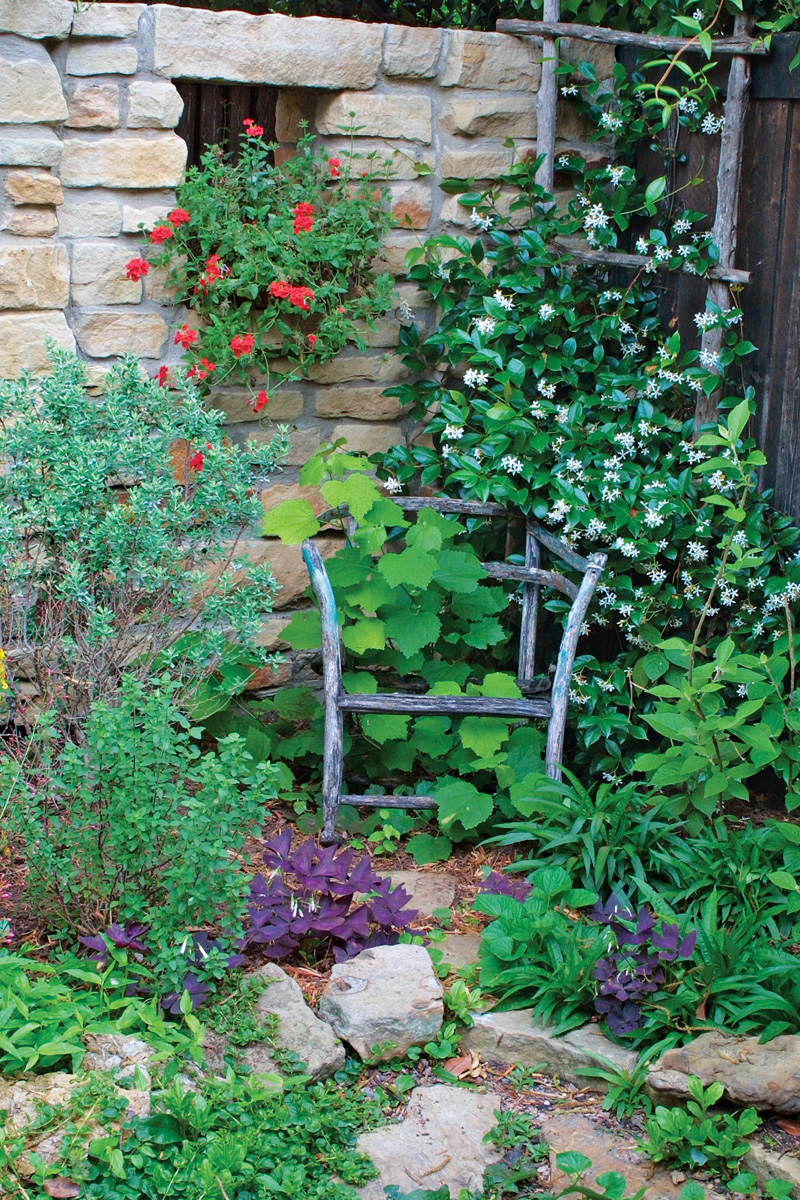 Climbers such as this jasmine and turk's cap sprawl across obstacles and lend a lush quality to the area