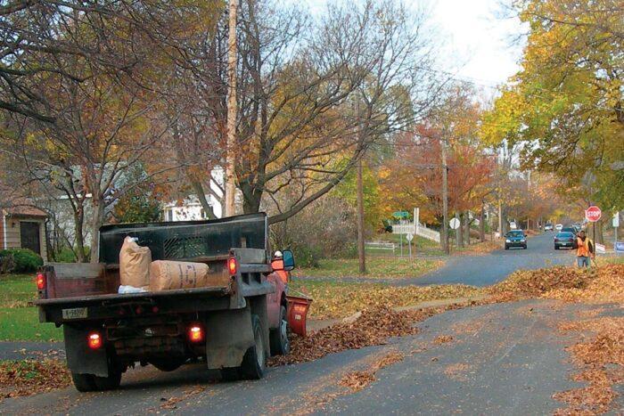 truck picking up fallen leaves