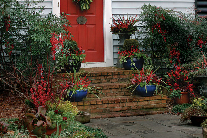 The Best Winter Containers From Outdoor Planters to Window ... Zone Plants Around House on full sun plants, plateau plants, zone 4 trees, evergreen rock garden plants, california plants, usda plants, united kingdom plants, zone 4 architecture, temperature zones for plants, zone 4 vines, garden mums plants, zone 4 landscaping, zone 4 flowers, zone 4 grasses, south dakota plants, san francisco plants, zone 4 gardening, roses plants, zone 4 roses, unknown plants,