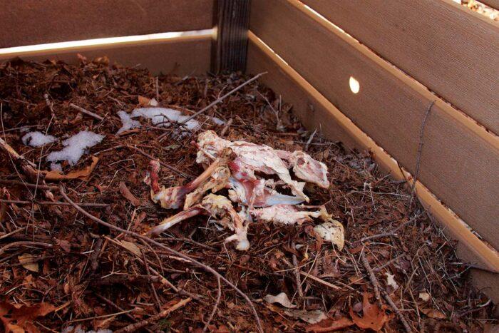 putting bones in compost
