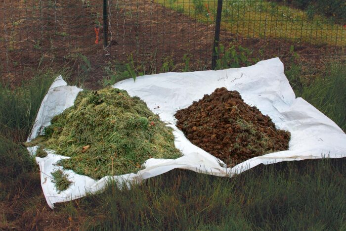telling the difference between your compost
