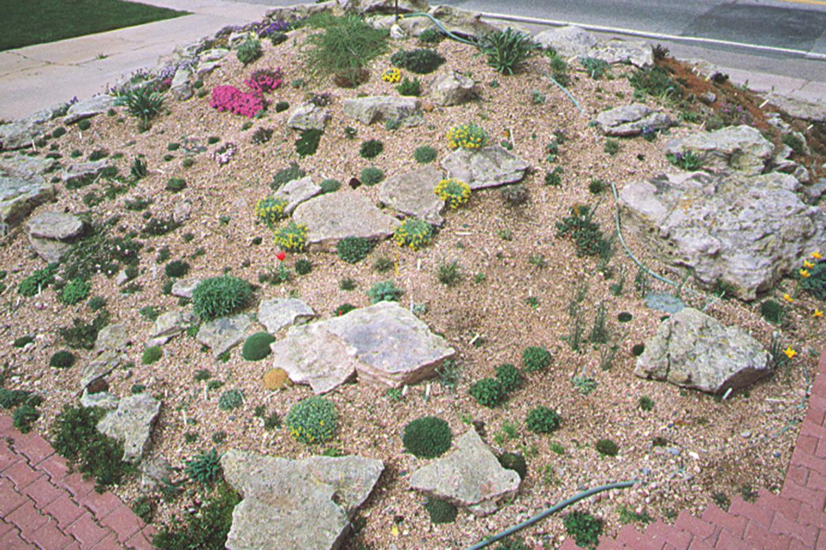 beginning of a rock garden