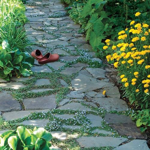 stone pathway with orange slip ons on the ground