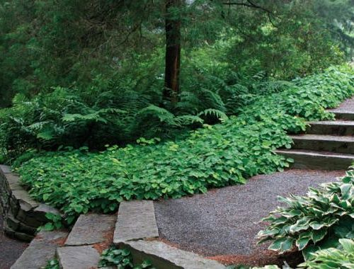 15 Tips For Designing A Garden Finegardening