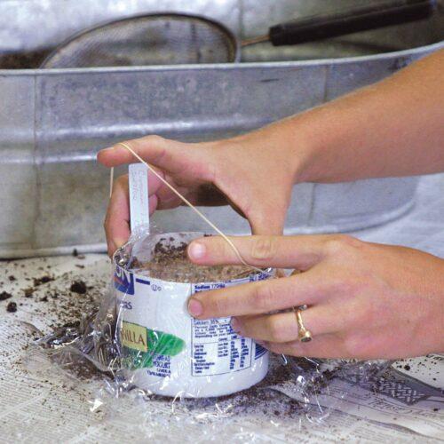 Plastic wrap ensures a constant moisture level.