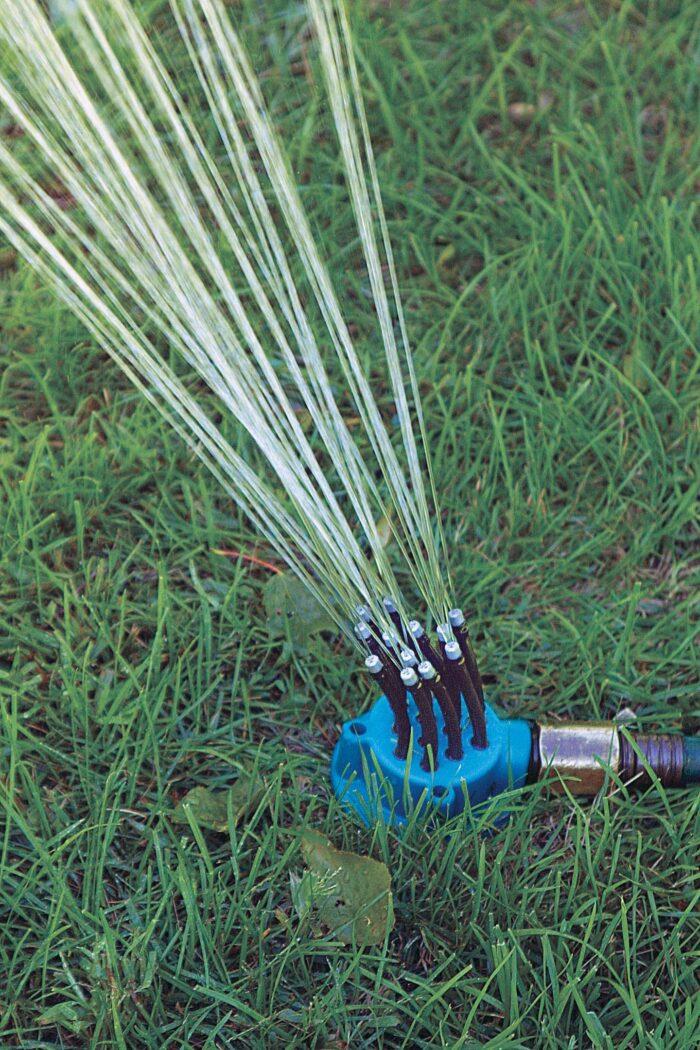Noodlehead sprinkler's 12 hoses