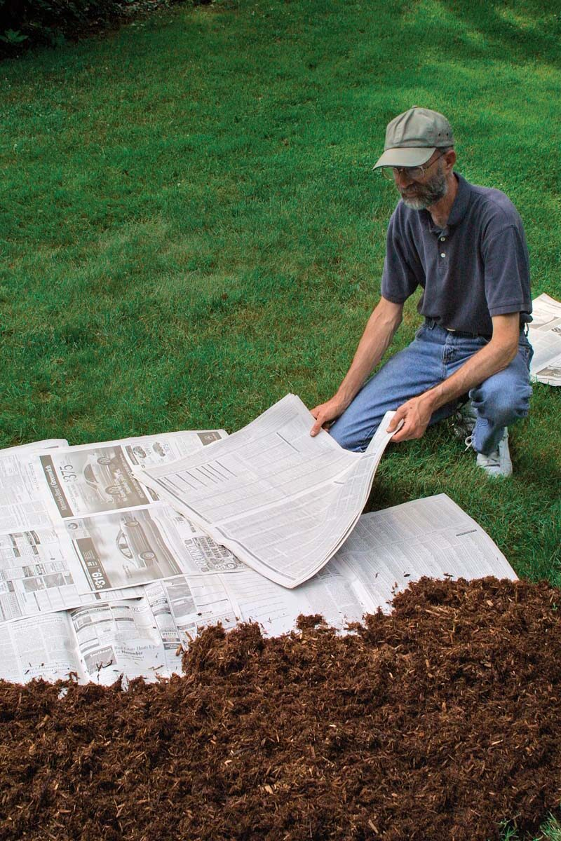 man setting newspaper down on grass to remove it