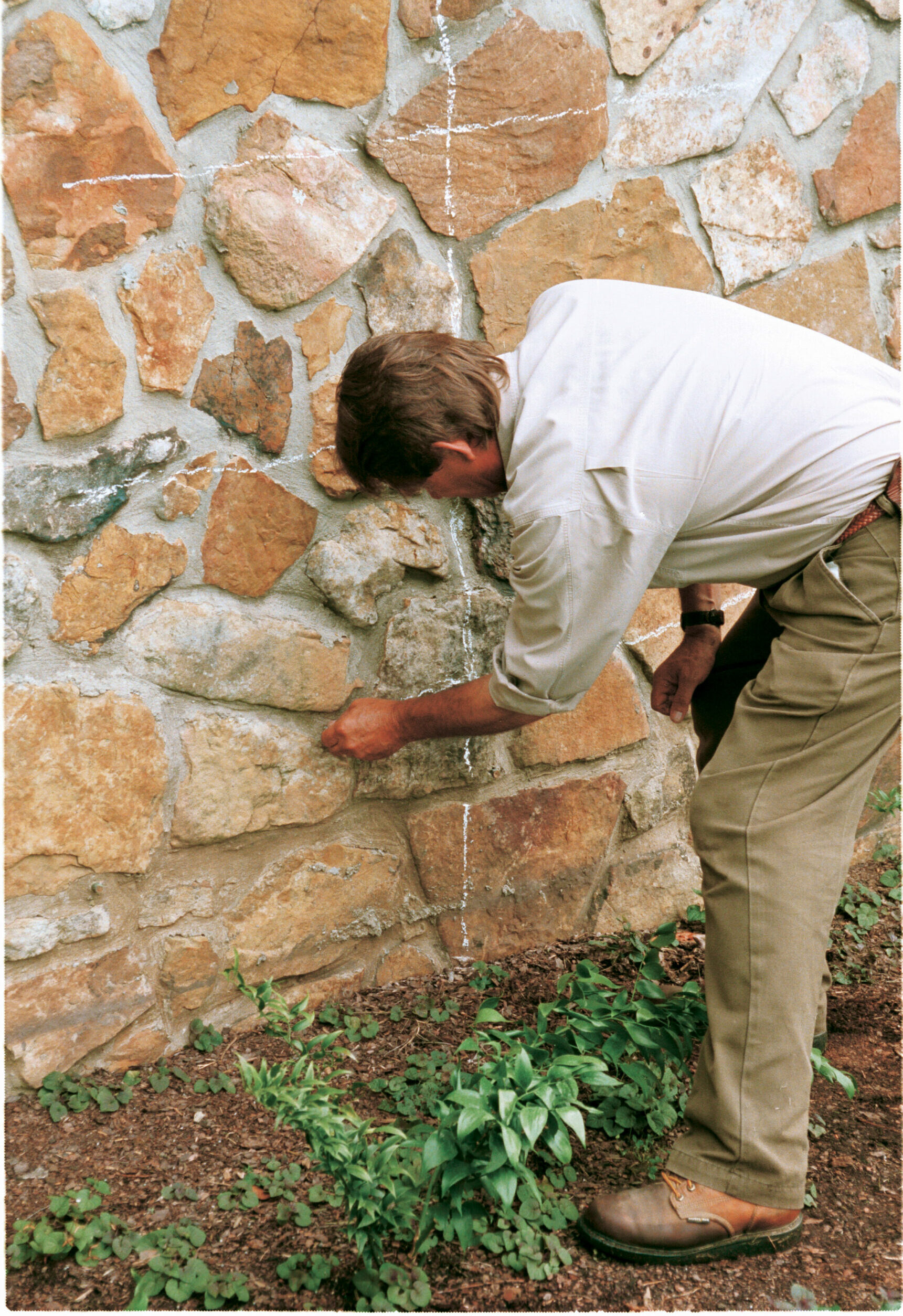 1. Trace an outline of the espalier design with chalk to use as a guide.