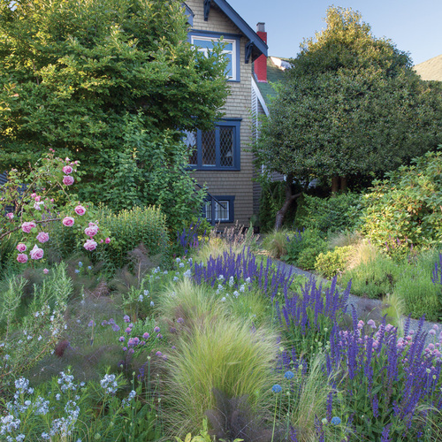 Viewing this home from the front, we can see that the designer of the front yard garden chose many massing plants that give the home a lush, hidden feeling