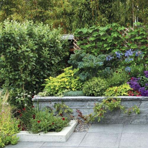 edible planter design