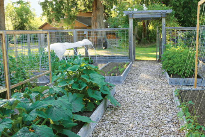 How to Design a Pest Proof Vegetable Garden - FineGardening