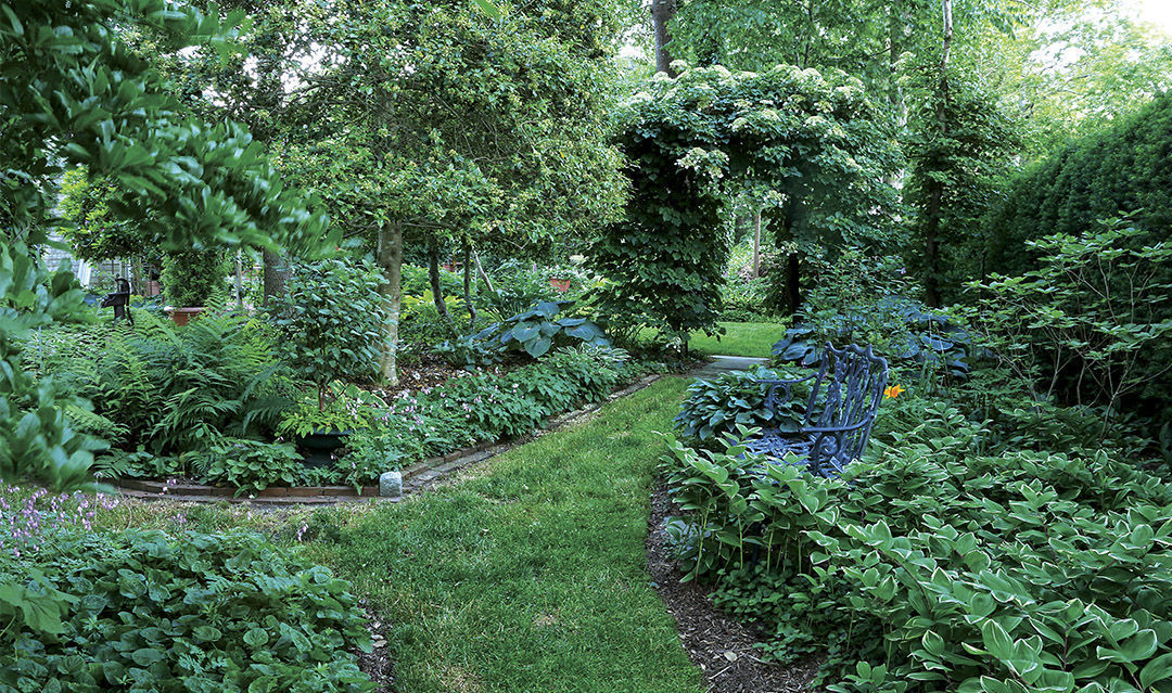pathways and framing helps a small garden feel larger