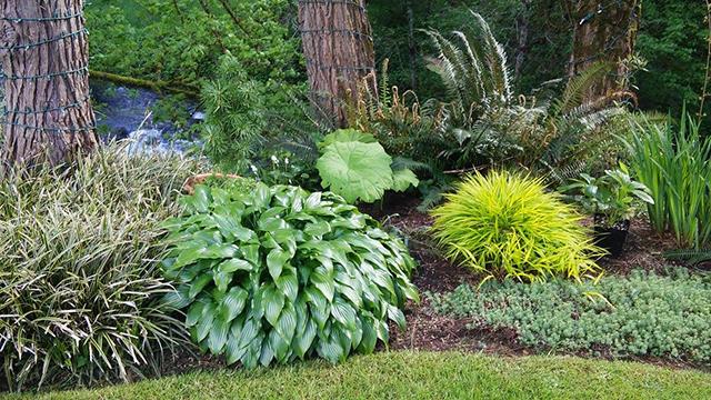 Home of the Oregon Garden - FineGardening
