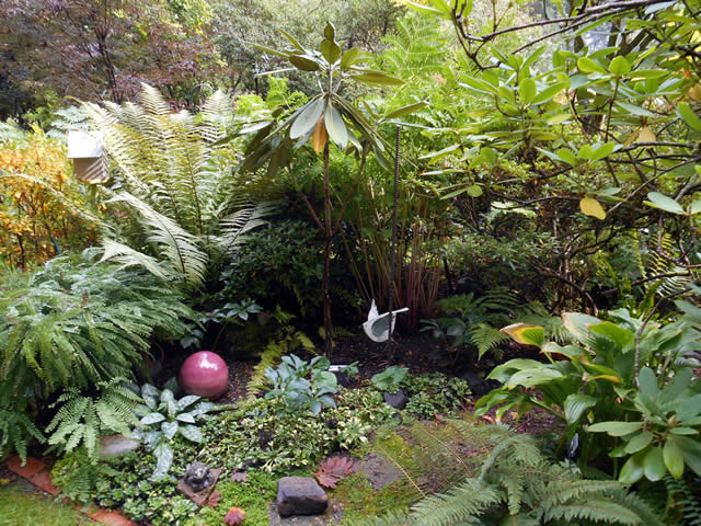 A Lively U0026 Colorful Shade Garden In The Pacific Northwest