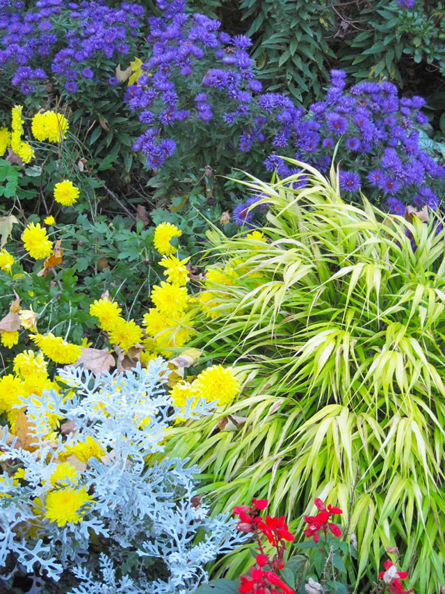 Healing Gardens - FineGardening
