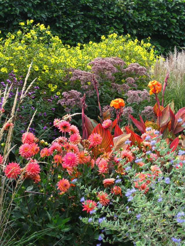 The lloyd border at white flower farm finegardening the lloyd border at white flower farm mightylinksfo