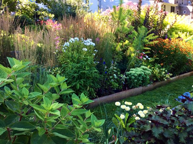 A Prairie Meadow Garden - FineGardening