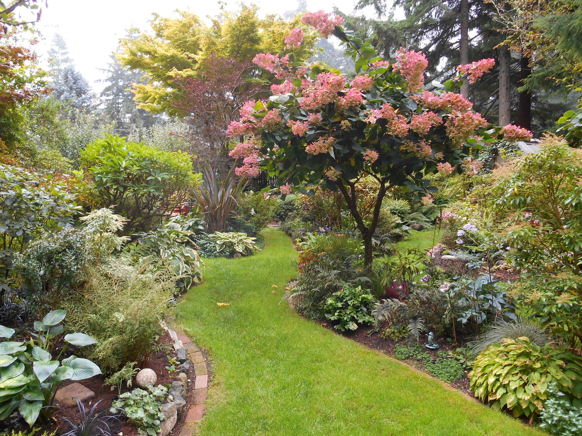 Beautiful Fall In Lindau0027s Garden On Bainbridge Island
