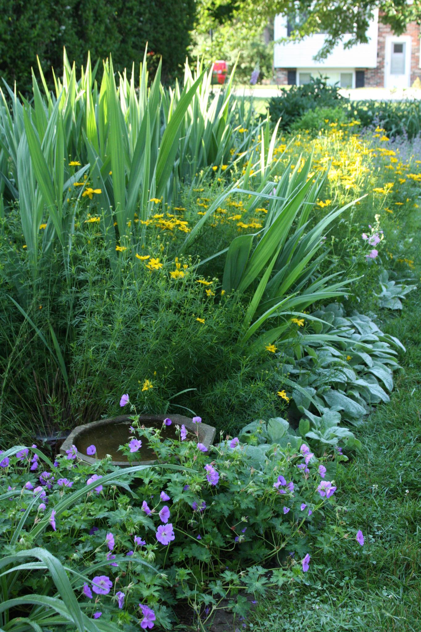 Whenever I Travel For Fine Gardening, I Do A Little Research To See If Any  Of You Live Near Where Iu0027m Going, And A Stop In Pittsburgh In Late June  Meant A ...