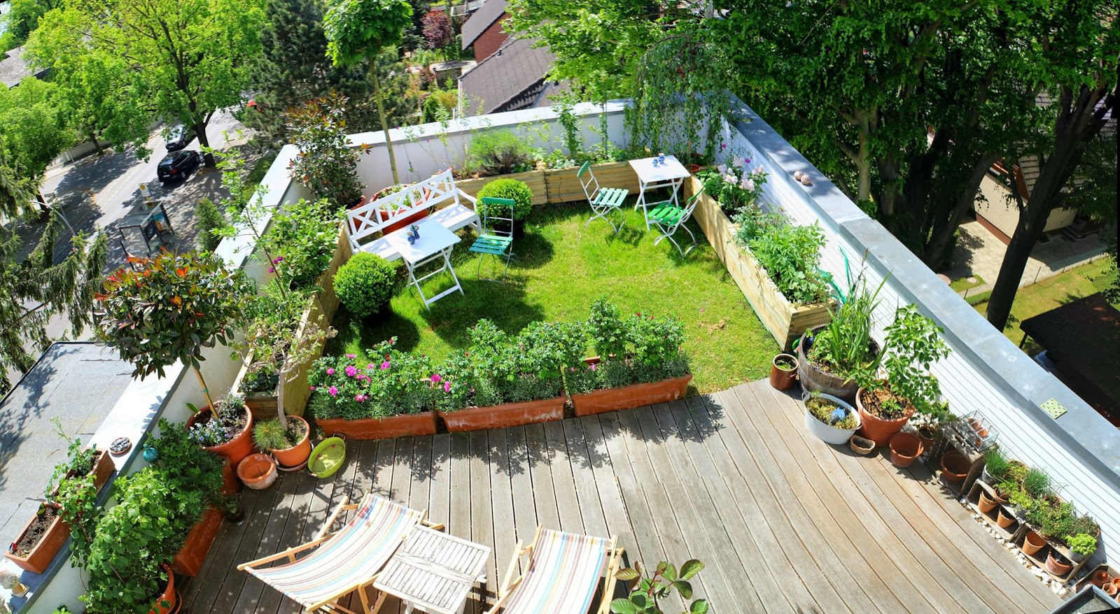 Tobias\'s rooftop garden in Berlin - FineGardening