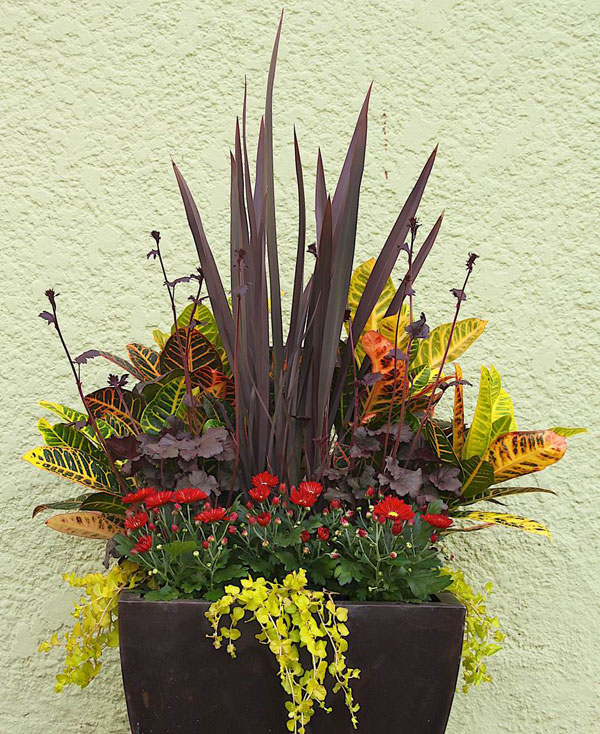 Designer secrets for over the top pots finegardening dont skimp on the water workwithnaturefo