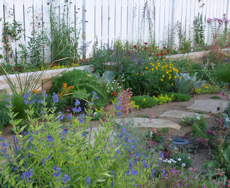 A Front-Yard Garden in No Time - FineGardening