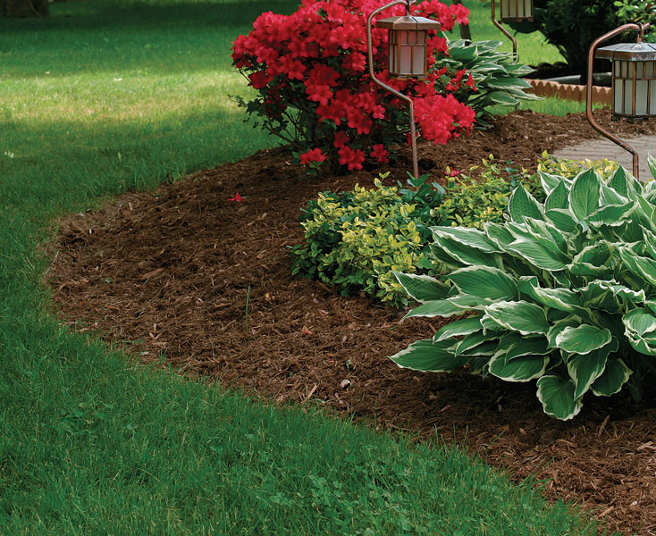 4 ways mulch positively affects soil - Use Mulch To Manage Your Soil Conditions - FineGardening