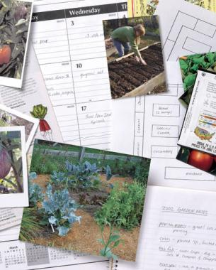 Beau Grow More Fruits, Vegetables, And Herbs By Devoting A Few Hours Each Day To  Planning