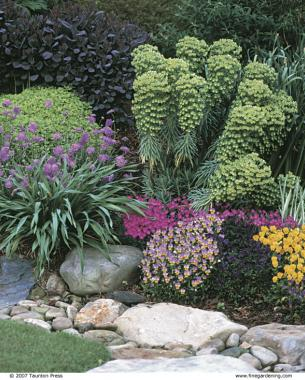Dry Stream Does Double Duty Finegardening